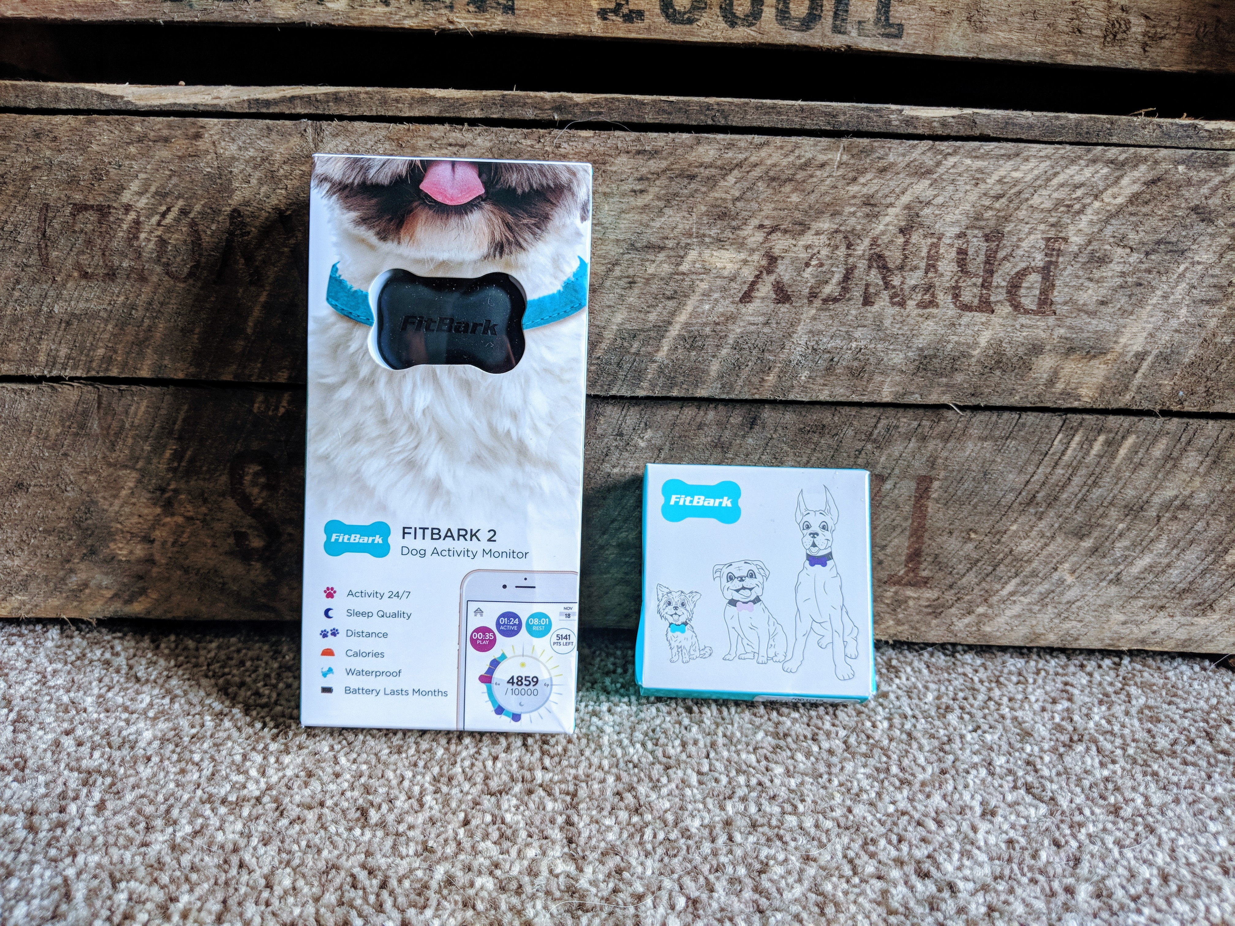 Fitbark review